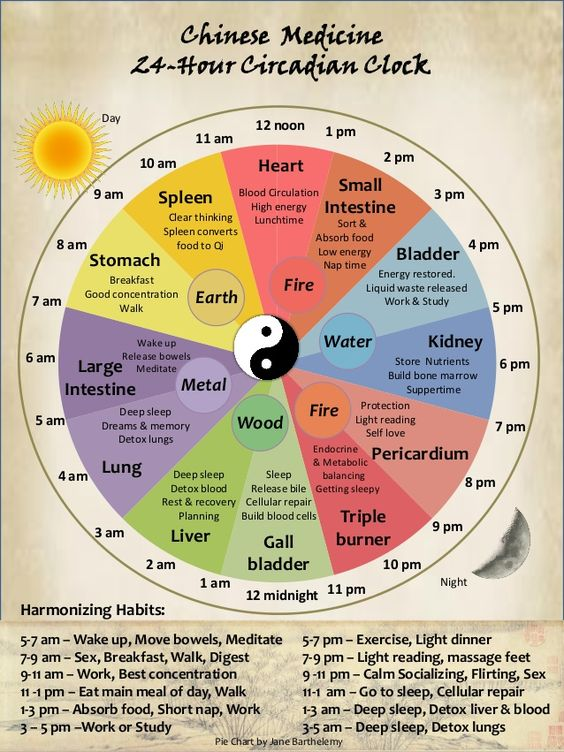 tcm-circadian-body-clock